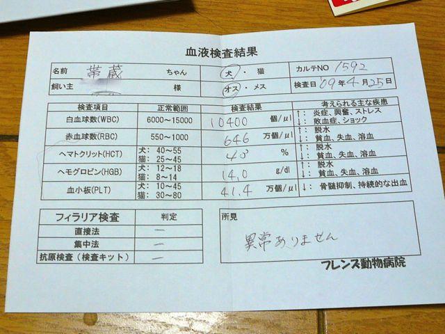 TAIZO20090426.jpg