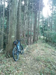trail20130112.jpg