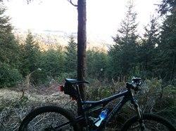 trail20130112_1.jpg