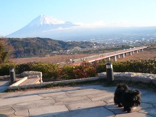TAIZO20080216.jpg