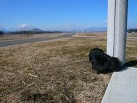 TAIZO20090125_9.jpg