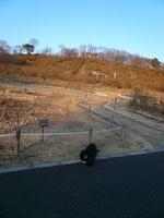 TAIZO20090315.jpg