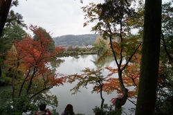 kanazawa20121118.jpg